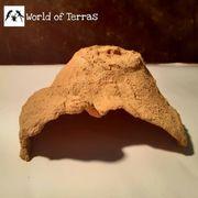Reptilienhöhle Unterschlupf L