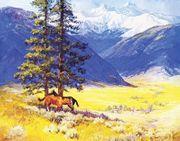Wo noch Pferd Pferd sein