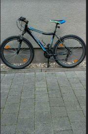 Fahrrad 26 Zoll Browser