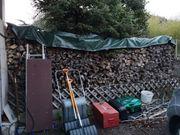 Brennholz Birke 50cm 4 5RM