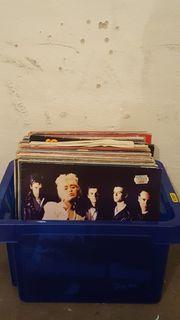 65 LP Paket