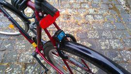 28 Herren Cityrad: Kleinanzeigen aus Sandersdorf - Rubrik Campingartikel