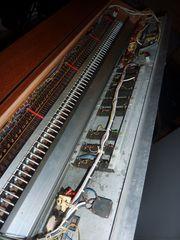 Hohner symphonic 65 vintage
