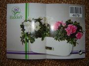 Blumenkasten mit Uhranzeige