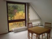 1 Zimmer teilmöbliert Nürnberg Tiergarten