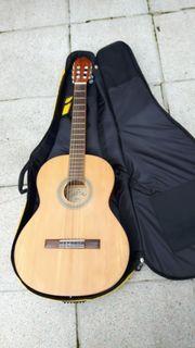 Gitarre und Tasche