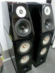 Von Schweikert Audio Floor Speaker