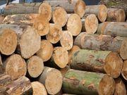 Schönes Brennholz Kaminholz