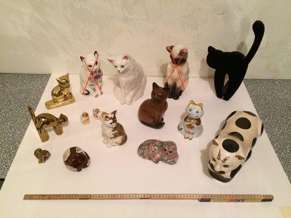 Katzen diverse
