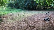 Gartengrundstück in Ehlhalten zu vermieten