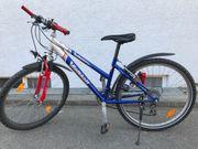 MTB Fahrrad 26 Zoll 21