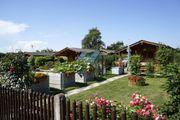 Suche Schrebergarten klein Garten zum