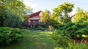 Ferienhaus am Donauknie Ungarn -Leányfalu