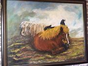 Ölgemälde Ponys