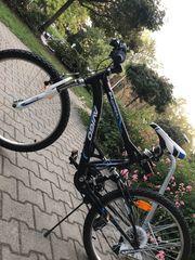 Herren Fahrrad Avigo Downhill 24