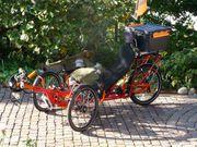 E-Trike Mungo von Seide - Vollfederung
