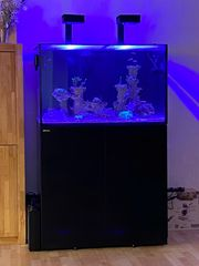 Red Sea Reefer 300 XL