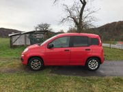 Fiat Panda More Allwetterreifen 4türer