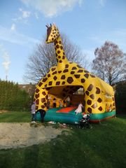 Hüpfburg Giraffe riesig 7x8x8m inkl