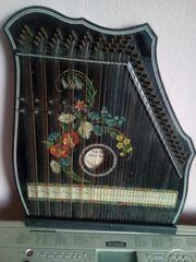 Zitter Konzert Salon Harfe