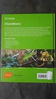 Chamäleon Buch
