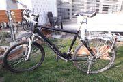 Mountainbike 26 Herren
