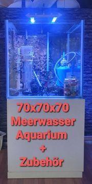 Meerwasser Komplettsystem 70x70x70 inkl Technik