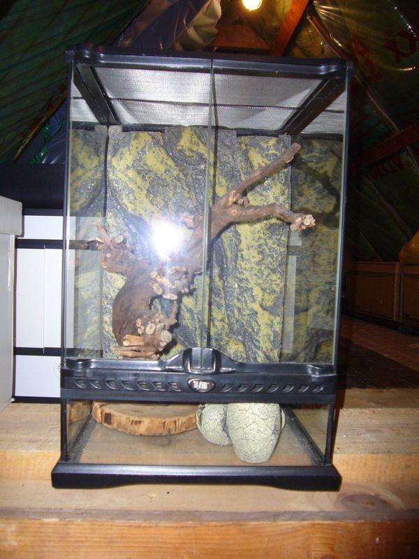 1x Zoo Med Naturalistic Terrarium