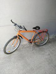 Fahrrad Agaz