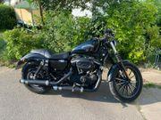 2013 Harley-Davidson Sportster Iron 883