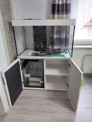 Tolles Eheim Aquarium Inspiria 300