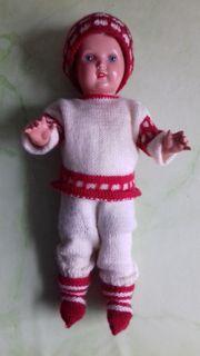 Puppe von Schildkröte Nr 36