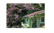 Suche Garten mit Häuschen in