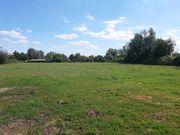 Pferdebox mit großer Weide