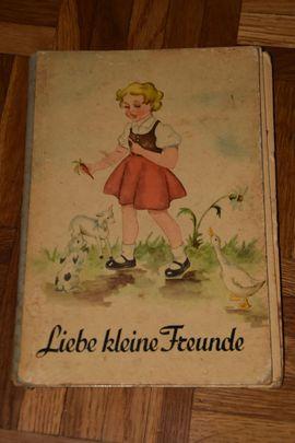 Kinder- und Jugendliteratur - 20 DDR Bücher - Weihnachtsmannfalle - Zauberer