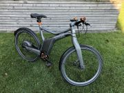 Smart E-bike Grau 250 W