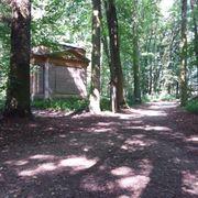 Suche Wohnung ländlich nähe Wald