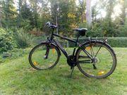 Fahrrad Pegasus Avanti Herrenfahrrad Trekkingrad