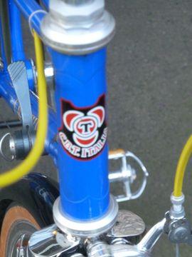 Mountain-Bikes, BMX-Räder, Rennräder - C B T Italia Damen