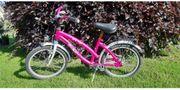Bachtenkirch Fahrrad Dream Cat pink