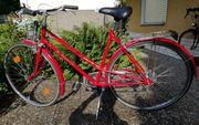 Montis Sport Fahrrad in rot