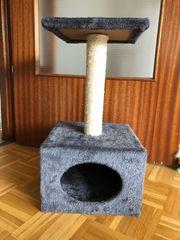Katzenkratzbaum für Kitten