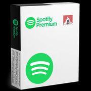 Spotify Premium Individual 12Mt