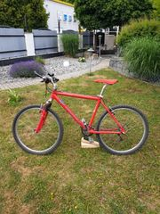 Fahrrad Winora Hai Edition