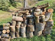 Brennholz Hartholz Nussbaum 2 5