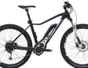 Bulls Aminga E1 E-Bike