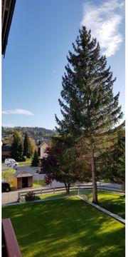 Helle ruhige Wohnung in Sulzberg