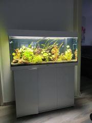 Aquarium komplett 180 l