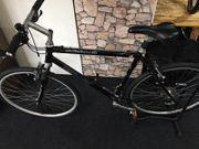 Bergamont Beluga Crossbike