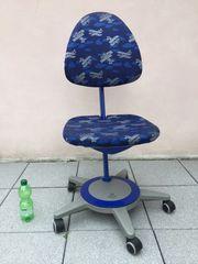 Moll Maximo Forte Schreibtisch Stuhl
